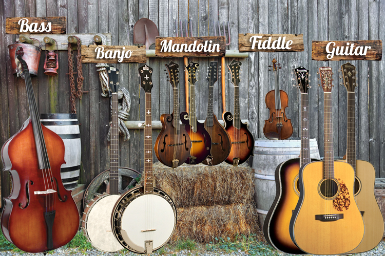 Blue Grass Instruments 110