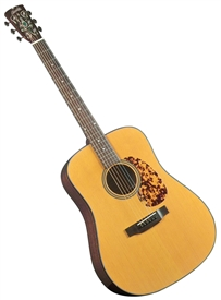 new blueridge br 140 acoustic guitar historic series dreadnought. Black Bedroom Furniture Sets. Home Design Ideas