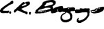 LR Baggs iBEAM Active Pickup - Steel or Nylon String Guitar Pickup w/ Preamp